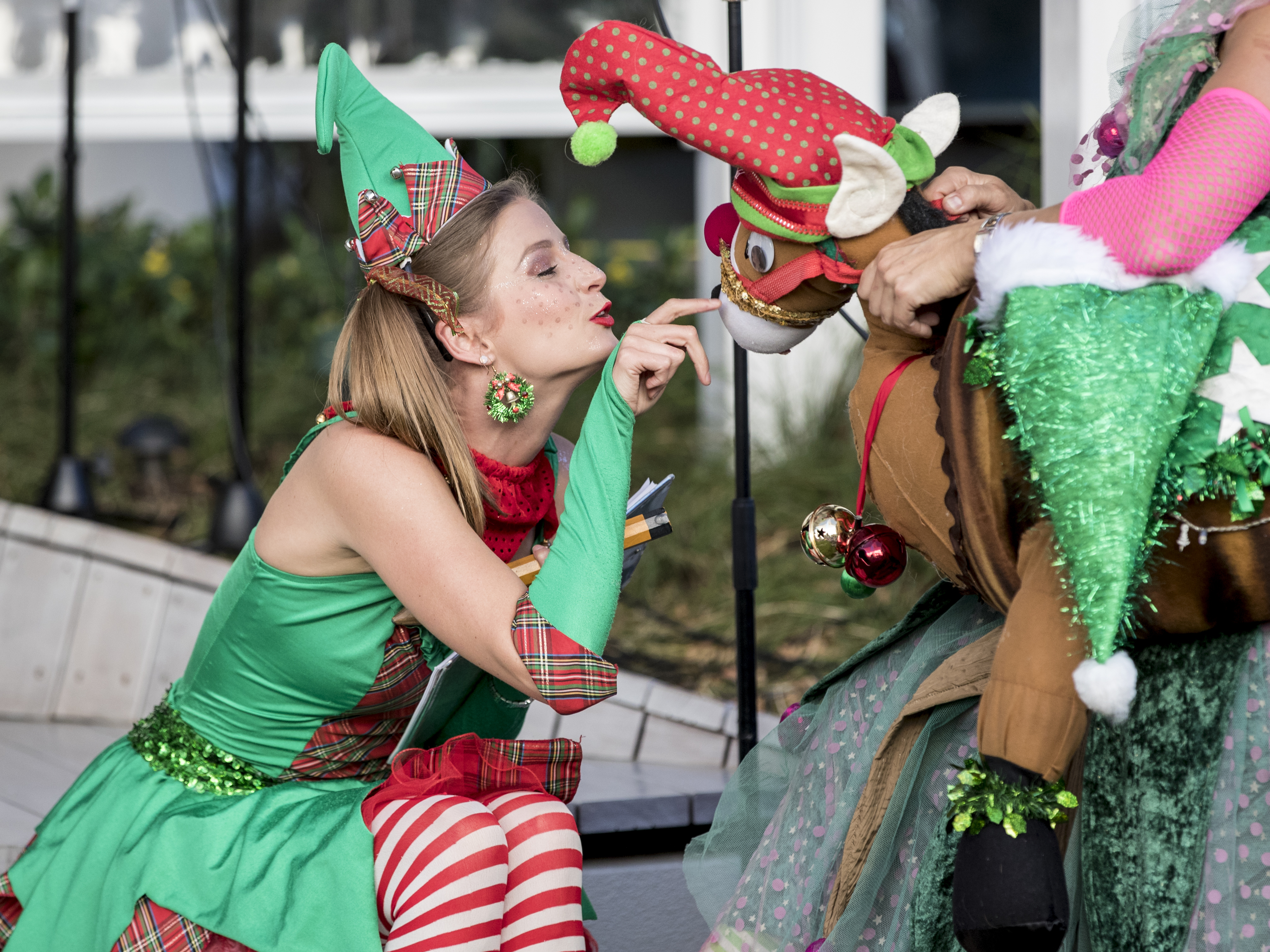 ZING THE CHEEKY ELF